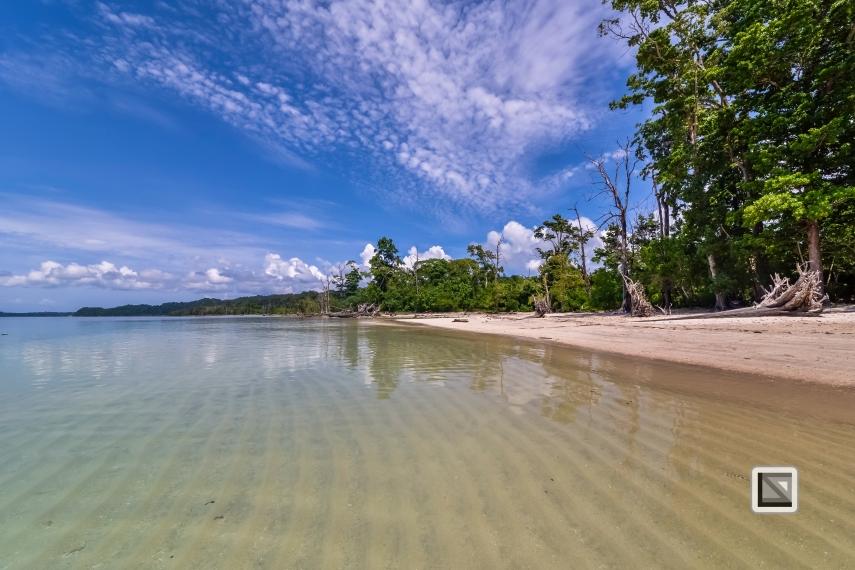 India - Andaman Islands - Havelock-44