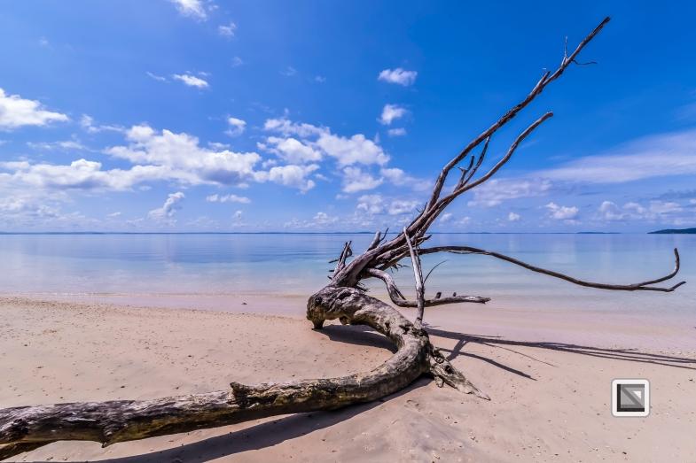 India - Andaman Islands - Havelock-46