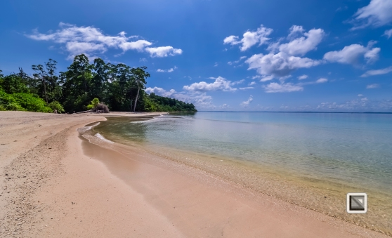 India - Andaman Islands - Havelock-48