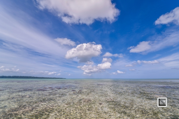 India - Andaman Islands - Havelock-5