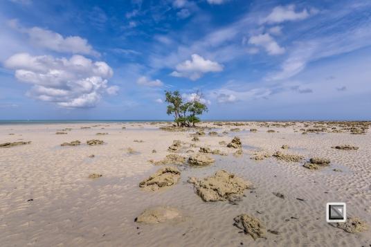 India - Andaman Islands - Havelock