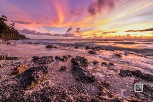 India - Andaman Islands - Neil-5
