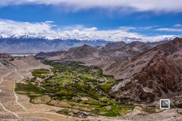 India - Jammu and Kashmir - Leh Ladakh-110