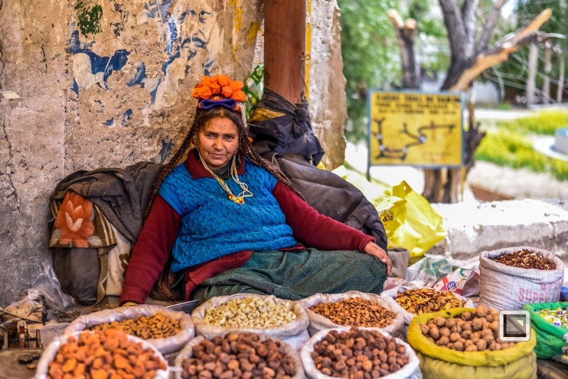 India - Jammu and Kashmir - Leh Ladakh-118