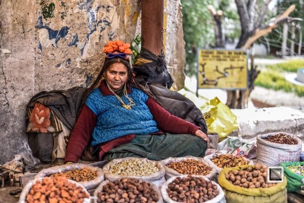 India - Jammu and Kashmir - Leh Ladakh-119