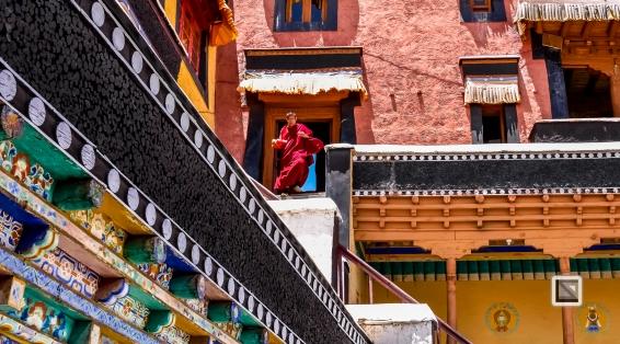 India - Jammu and Kashmir - Leh Ladakh-19