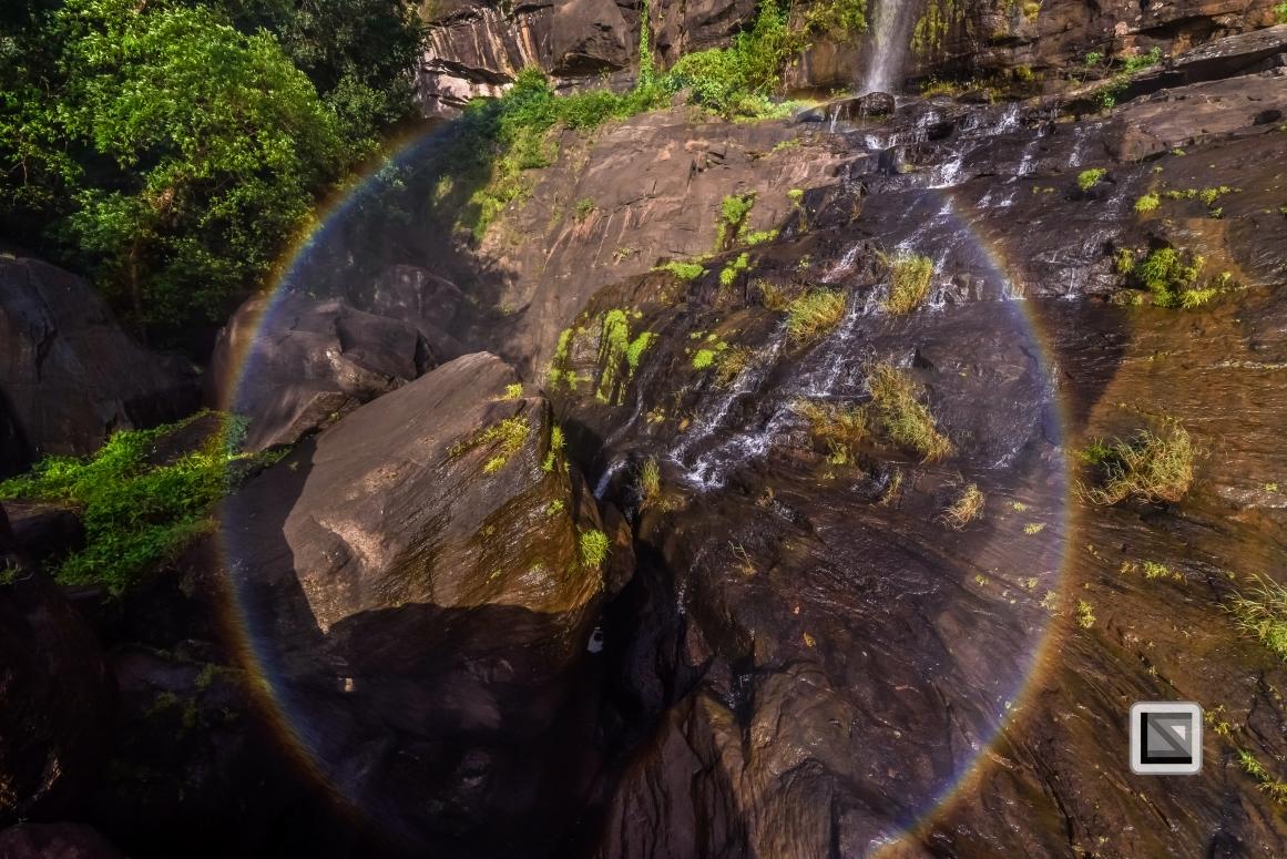 India - Kerala - Athirapally Falls-9