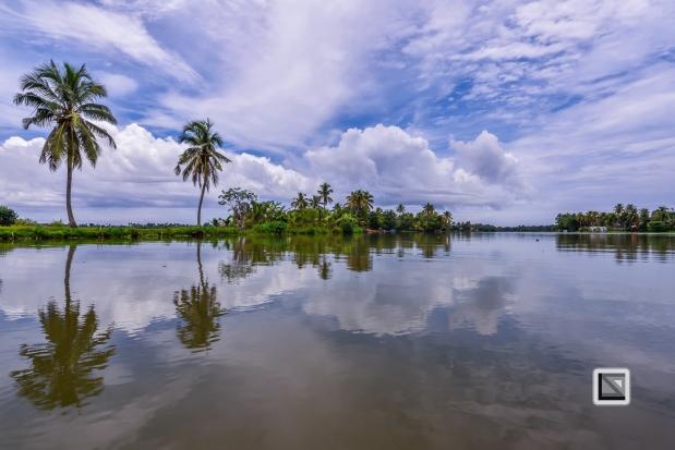 India - Kerala - Backwaters-10