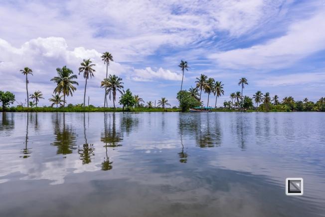 India - Kerala - Backwaters-12