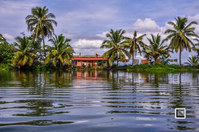 India - Kerala - Backwaters-18