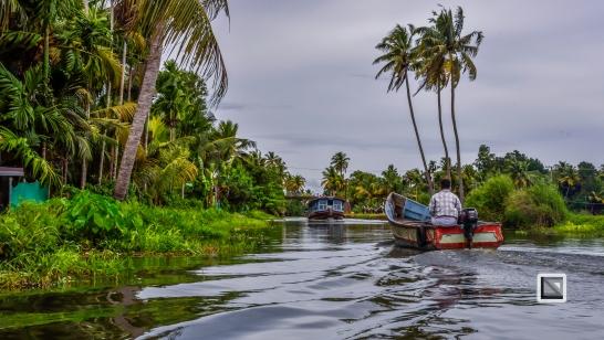 India - Kerala - Backwaters-2