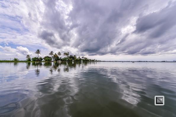 India - Kerala - Backwaters-20