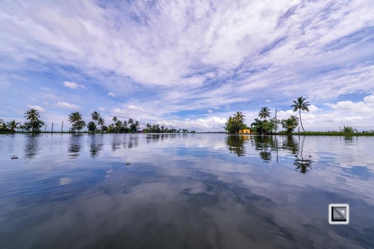 India - Kerala - Backwaters-21