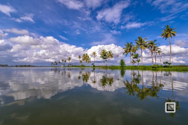 India - Kerala - Backwaters-31