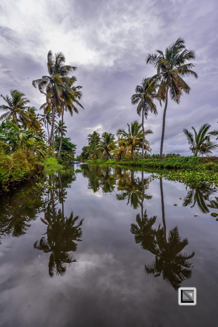 India - Kerala - Backwaters-4