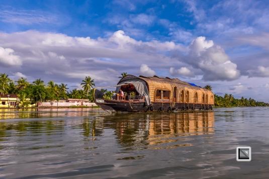 India - Kerala - Backwaters-42