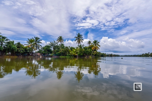 India - Kerala - Backwaters-5