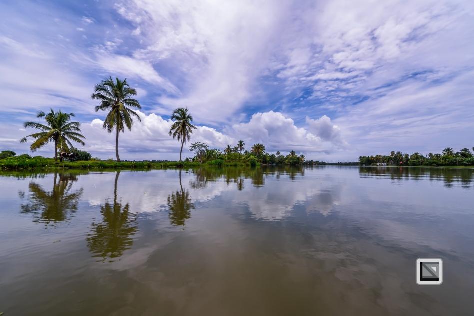 India - Kerala - Backwaters-9