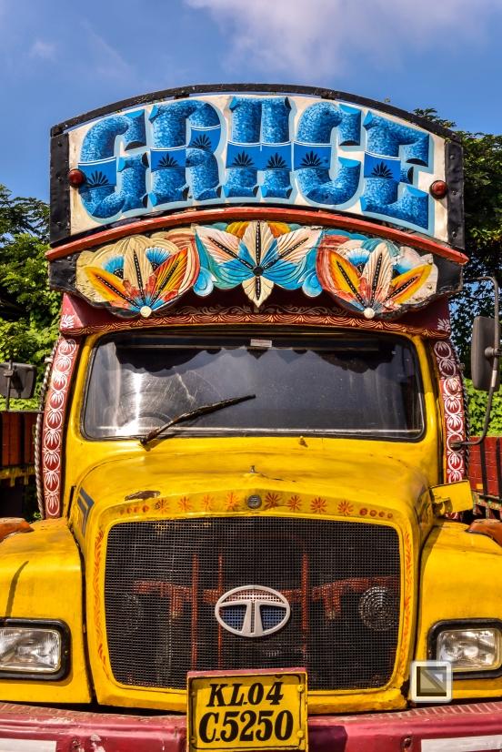 India - Kerala - Fort Kochi-5