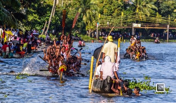 India - Kerala - Kumarakom Boat Race-11
