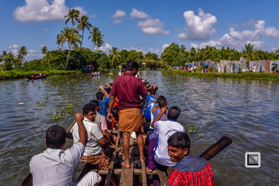 India - Kerala - Kumarakom Boat Race-2