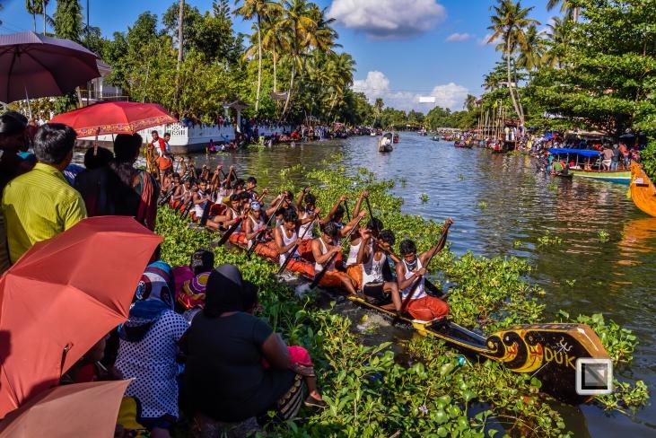 India - Kerala - Kumarakom Boat Race-4