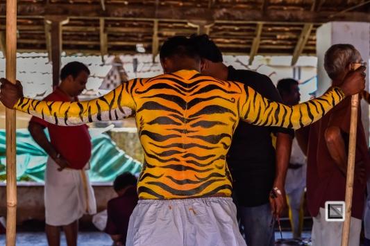 India - Kerala - Thrissur - Onam Festival - Pulikali-3