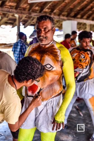 India - Kerala - Thrissur - Onam Festival - Pulikali-4