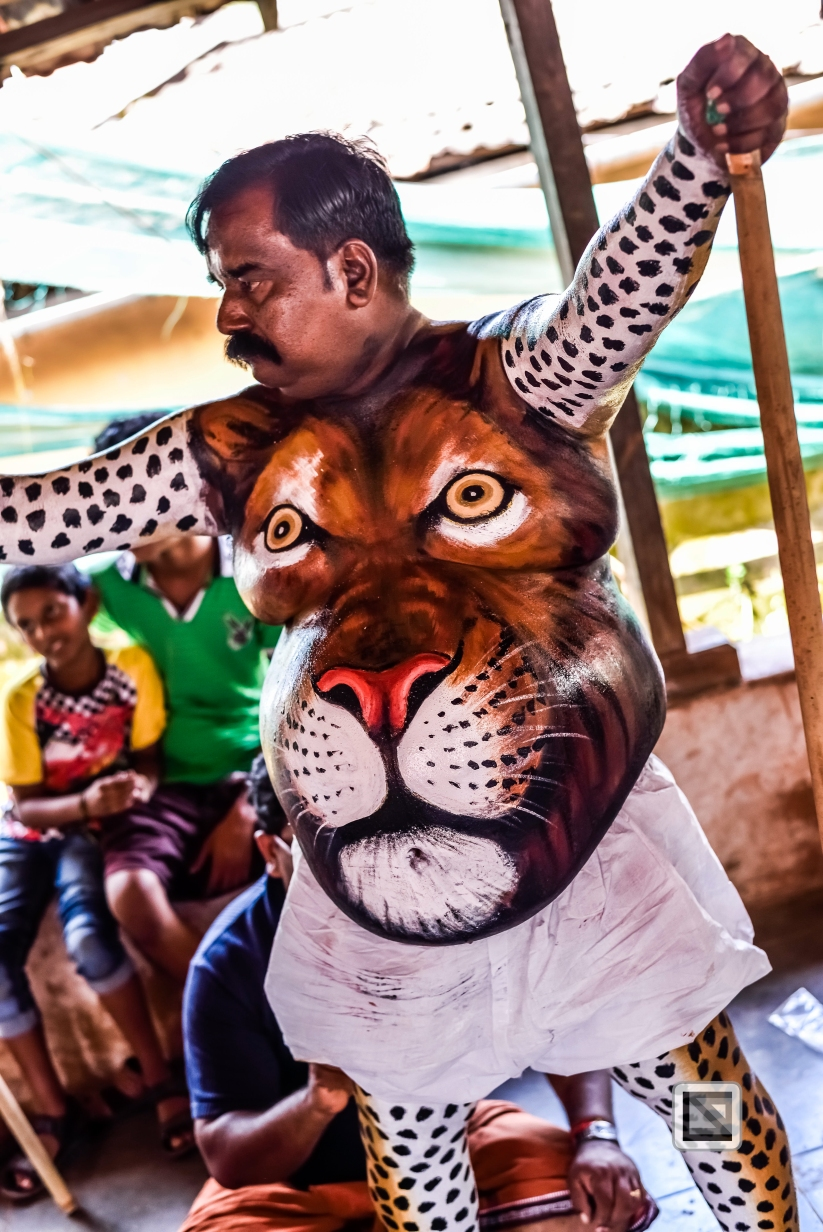 India - Kerala - Thrissur - Onam Festival - Pulikali-43