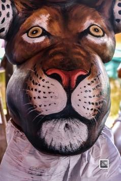 India - Kerala - Thrissur - Onam Festival - Pulikali-45