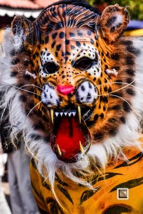 India - Kerala - Thrissur - Onam Festival - Pulikali-56