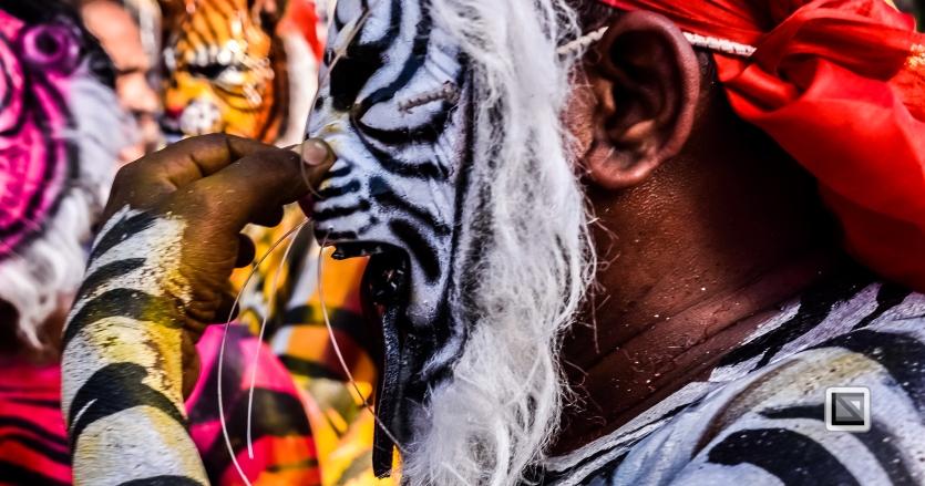 India - Kerala - Thrissur - Onam Festival - Pulikali-58