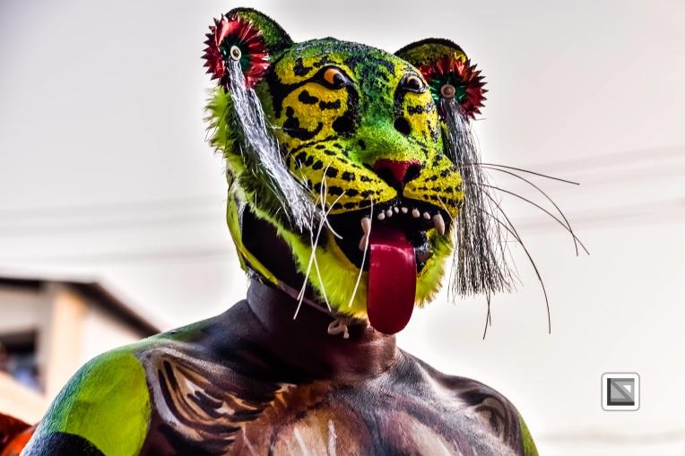 India - Kerala - Thrissur - Onam Festival - Pulikali-68