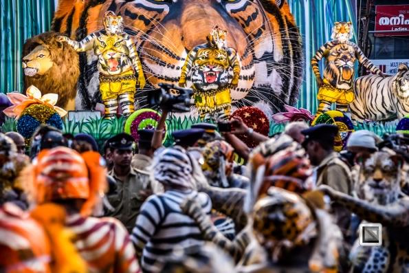 India - Kerala - Thrissur - Onam Festival - Pulikali-70
