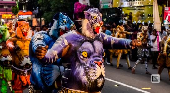 India - Kerala - Thrissur - Onam Festival - Pulikali-73