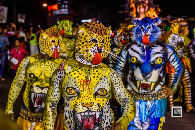 India - Kerala - Thrissur - Onam Festival - Pulikali-83