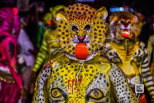 India - Kerala - Thrissur - Onam Festival - Pulikali-86