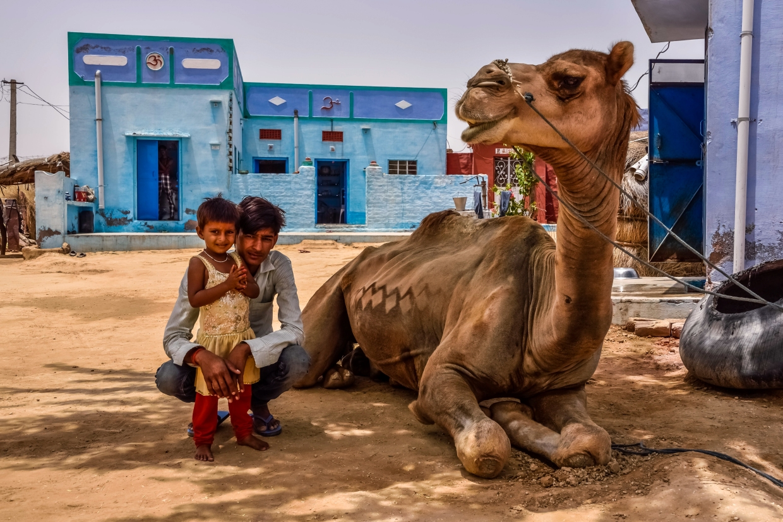 India - Rajasthan - Bikaner-3