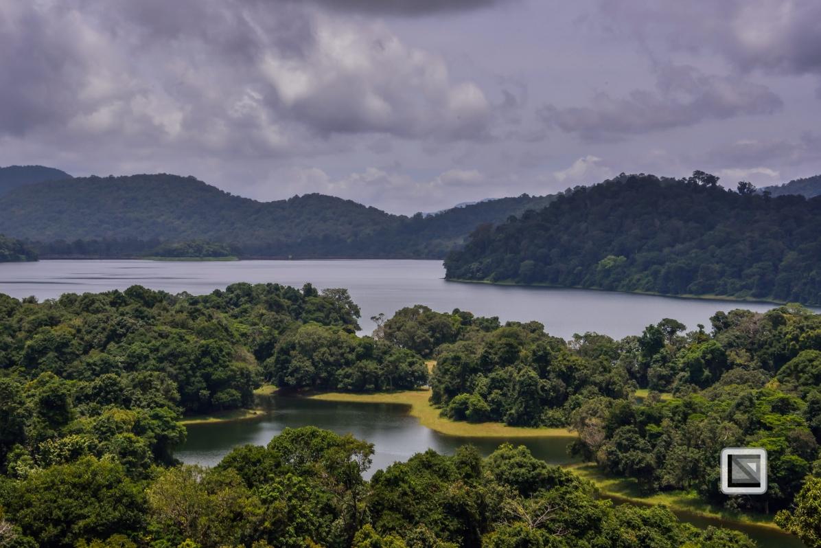 India - Tamil Nadu - Valparai-2