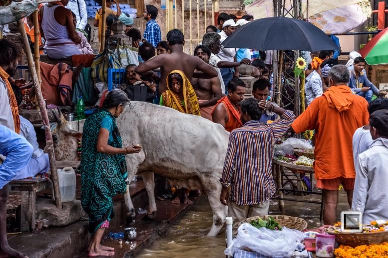 India - West Bengal - Varanasi-10