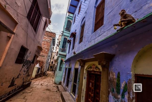 India - West Bengal - Varanasi-73