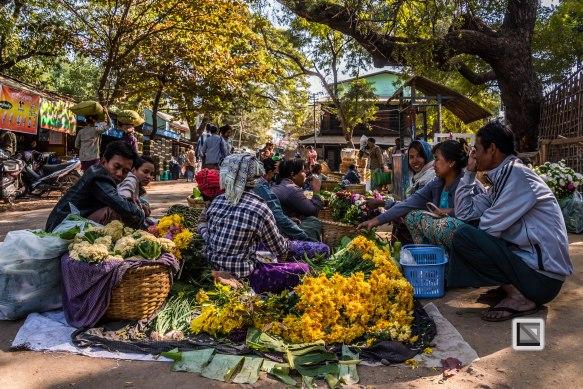 Irrawaddy River-15