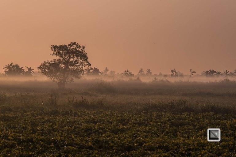 Irrawaddy River-210