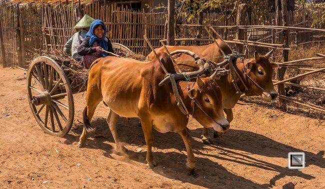Irrawaddy River-47