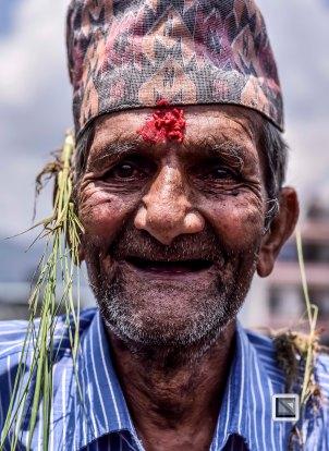 Pokhara paddy planting festival-5