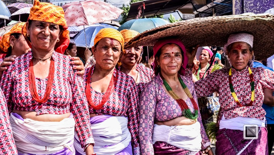 Pokhara paddy planting festival-87