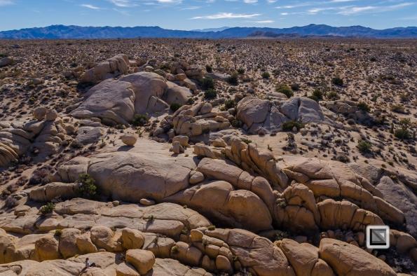USA - California - Joshua national park-27