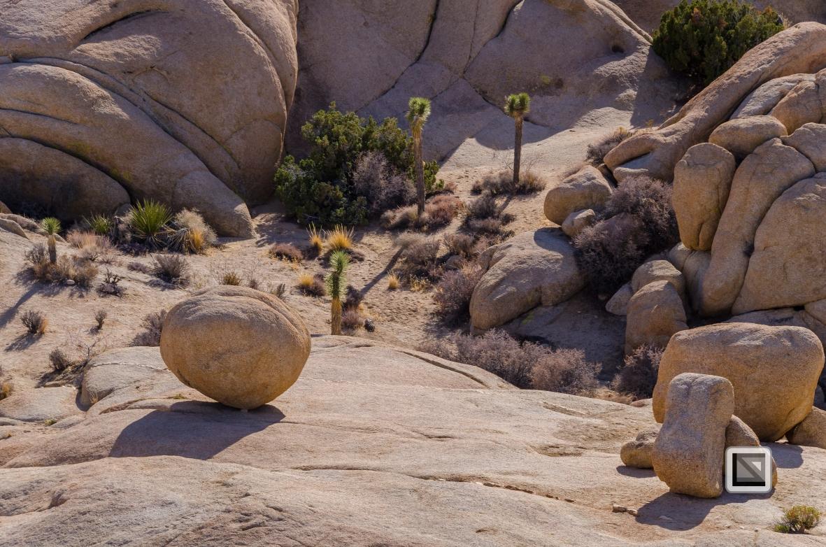 USA - California - Joshua national park-28