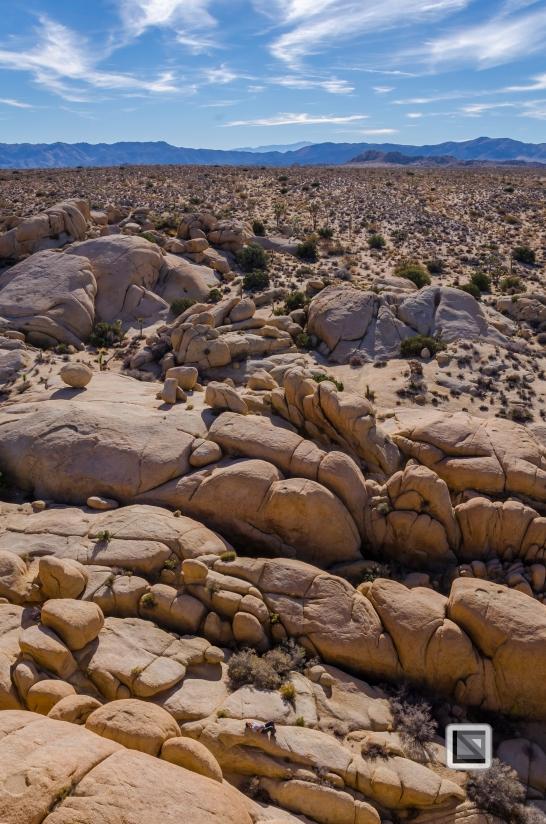 USA - California - Joshua national park-30