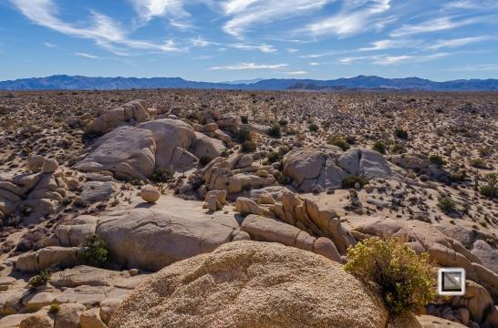 USA - California - Joshua national park-31
